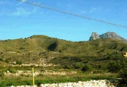 Rural Property in calle Buidasacos Pol. 26 Parc 17 y 19