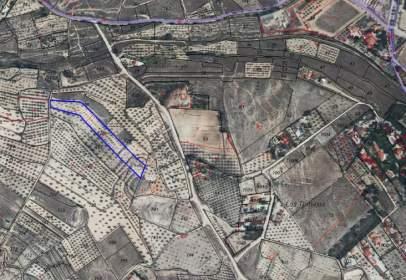 Land in calle Vereda La Toconera