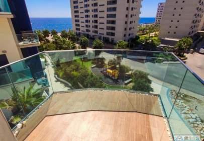 Apartament a Punta Prima