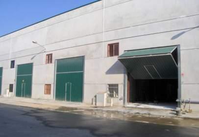 Nave industrial en La Algaba