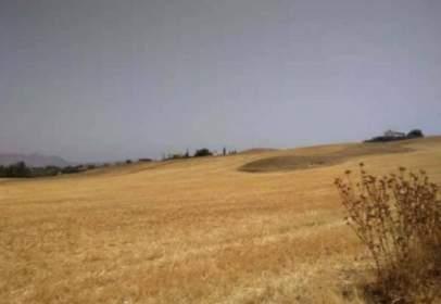 Terreno en Las Flores-La Huerta