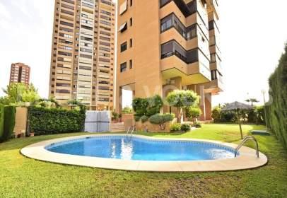 Apartment in Centre