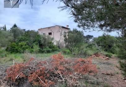 Casa rústica en Costitx