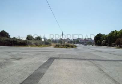 Terreno en calle Berenguer D'anoia, nº 50