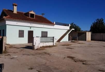 Piso en calle Pinaeta