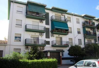 Flat in calle Sector Andalucia, nº 3