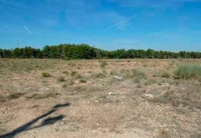 Land in calle Sector Pla de La Cerdera Alta del Pgm de Lleida