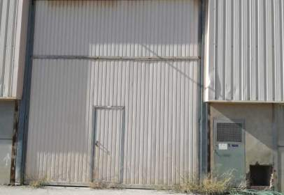 Industrial Warehouse in calle Pp Sector C