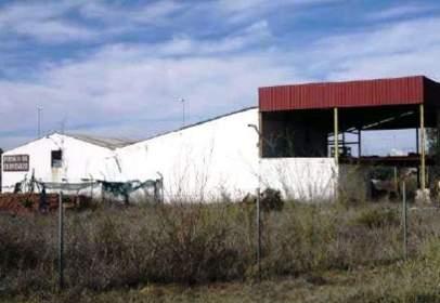 Industrial Warehouse in calle Nacional 431 (Km 88, Polígono 6), nº S/N