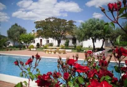 Rural Property in Sevilla Capital