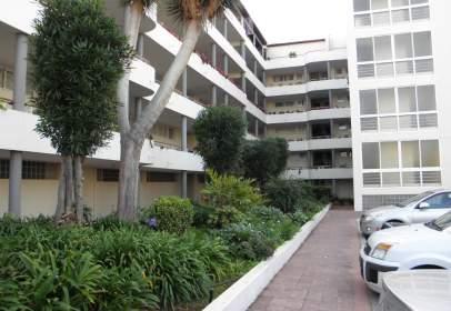 Apartamento en El Botánico