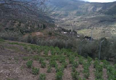 Chalet en Los Villares