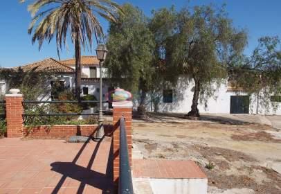Rural Property in , Cerca del Mar, Cerca del Golf, Cerca del Río, Cerca de La Marina, Cerca del Puerto, en El Campo