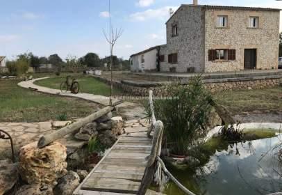 Rural Property in Santa Margalida
