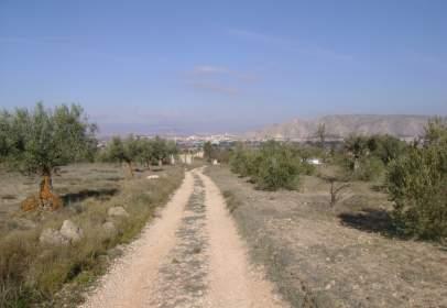 Land in Sector Peña Rubia.