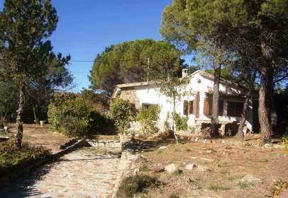 Single-family house in Estacion