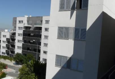 Flat in Avenida Circunvalacion, nº 3