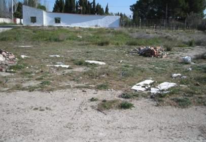Terreno en calle El Vedadillo