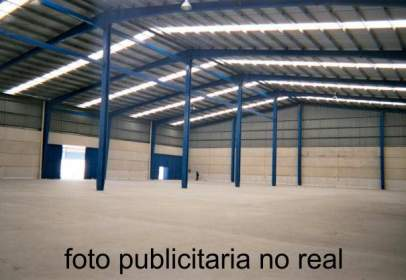 Industrial Warehouse in Poligon del Segre