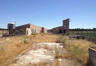 Nau industrial a Polígono Paraje El Soto