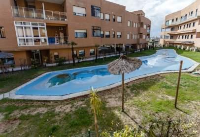 Promoción de tipologias Vivienda Garaje Trastero en venta CARBAJOSA DE LA SAGRADA Salamanca