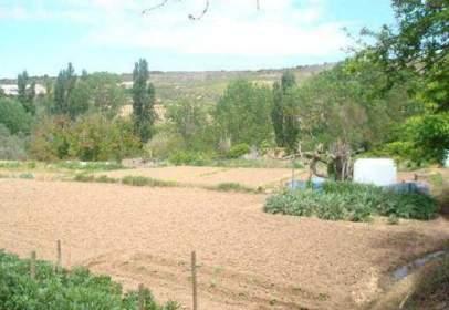 Promoción de tipologias Terreno en venta FUENMAYOR La Rioja
