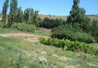 Rural Property in  Las Huertas.,  Pol.8