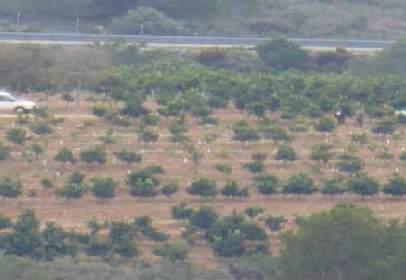 Rural Property in Poligono,  6