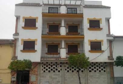 Promoción de tipologias Vivienda Local en venta ALAMEDA Málaga