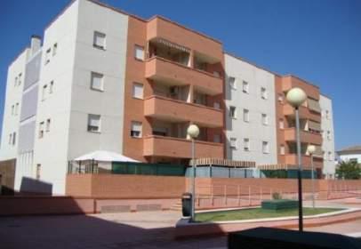 Promoción de tipologias Vivienda en alquiler JEREZ DE LA FRONTERA Cádiz