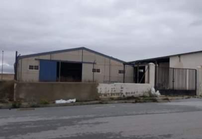 Industrial building in Polígono Aljibe,  4